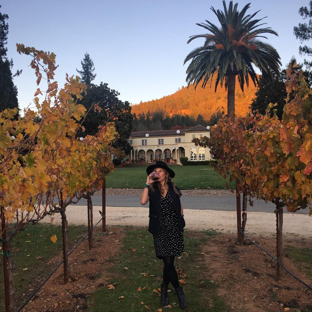 When in Sonoma ... #winetasting #sonoma #sunset #palmtree #vineyard
