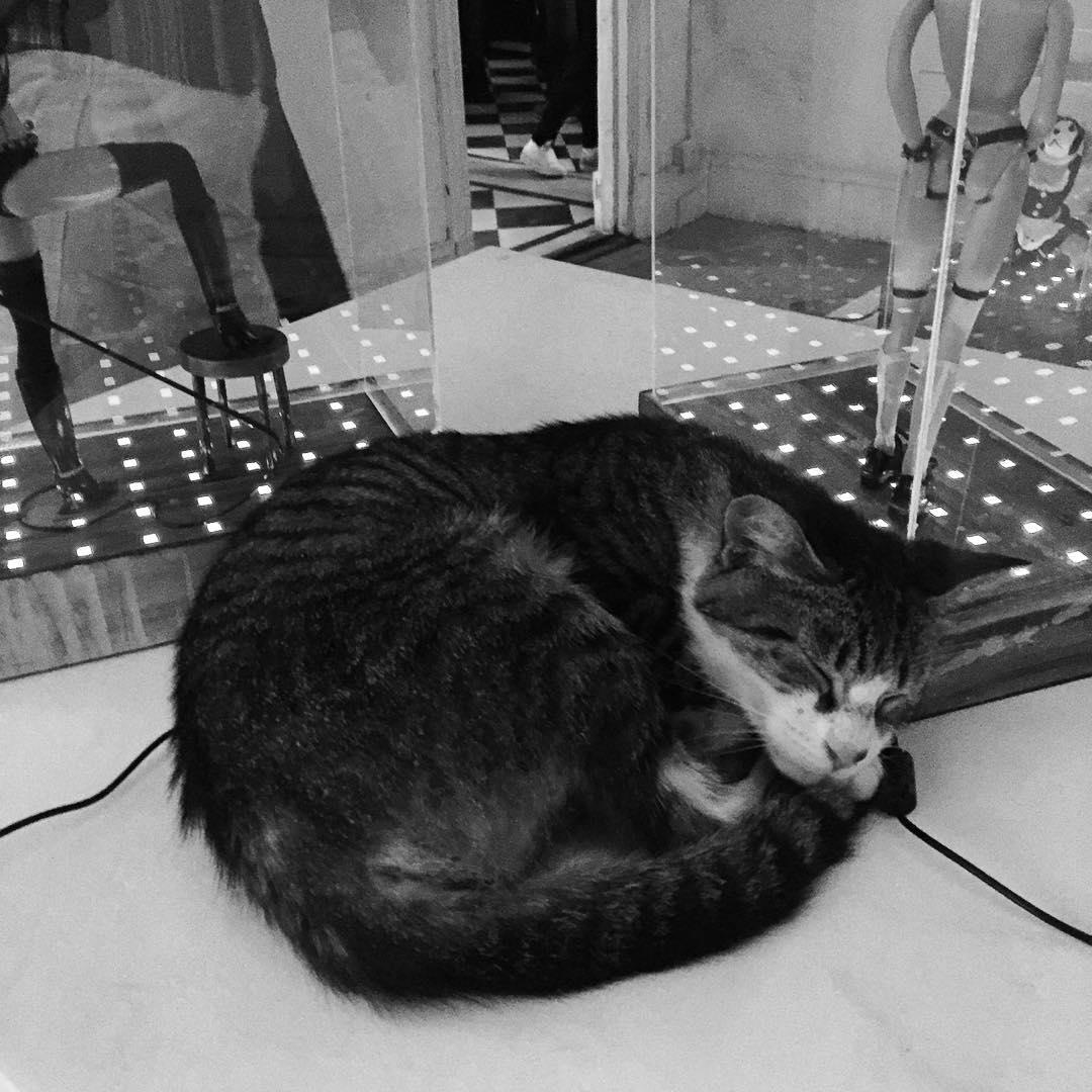 Descansate! #darte