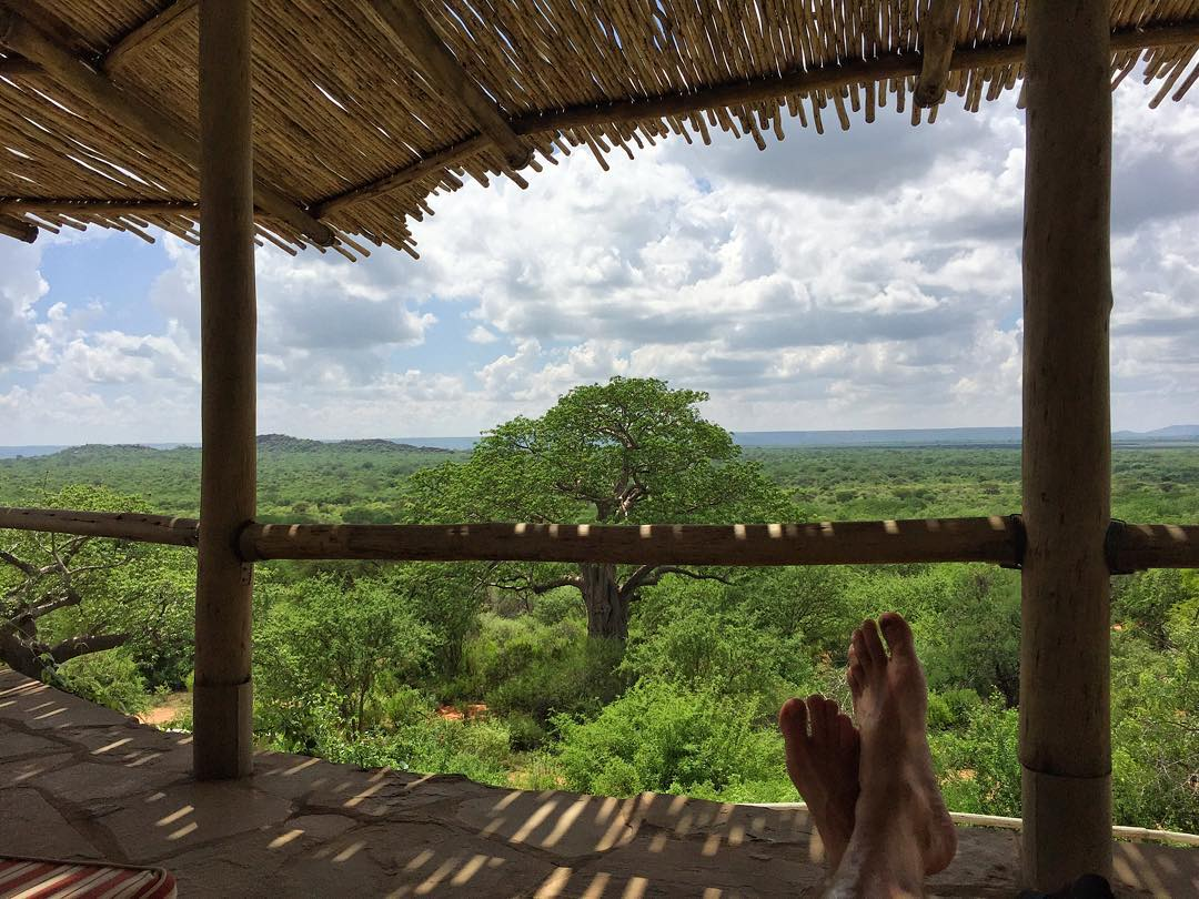 "My morning view of the Tsavo East National Park, from the pool area of our ""camp"". There are many, many hungry things that can kill you down in that brush right below me. #lionsnacks #Africa #Kenya #IthumbuHill"