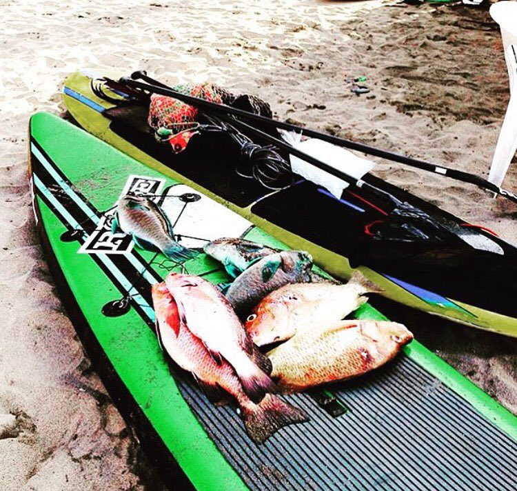 Dinner is served! #roguesup #sup #weekend #standuppaddle