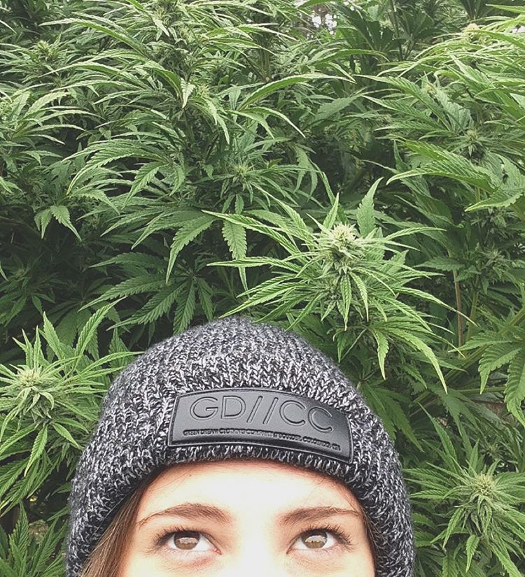 where is your green dream beanie taking you this winter? hannah woke up in a field of greenery in oregon.  tag me in your shots so we can see where green dream is around the world. happy sunday.