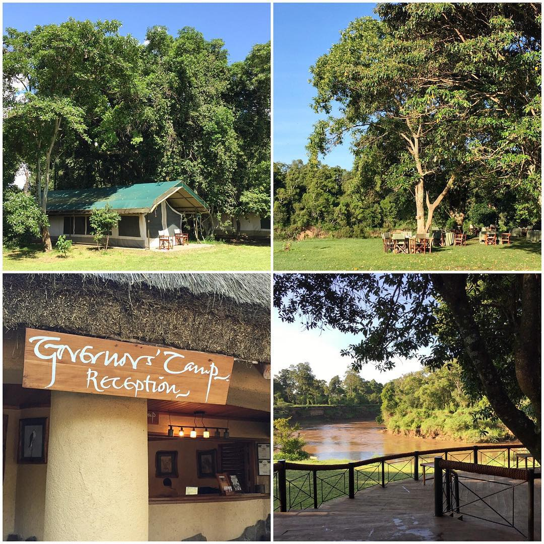 "For the last four days of our trip here in Kenya, we stayed at this 5-star safari camp called Governors Camp in the Masai Mara National Park. All the ""rooms"" were tent-type structures, right next to open land - as well as a river where hippos,..."