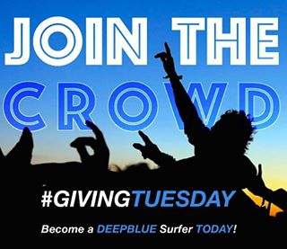 #GivingTUESDAY is back TODAY so please support our goal to make positive change! Here's the plan – 10 days, 100 new Deep Blue surfers, raising $10,000 to support our organization's efforts to help protect the health and future of our ocean playground....