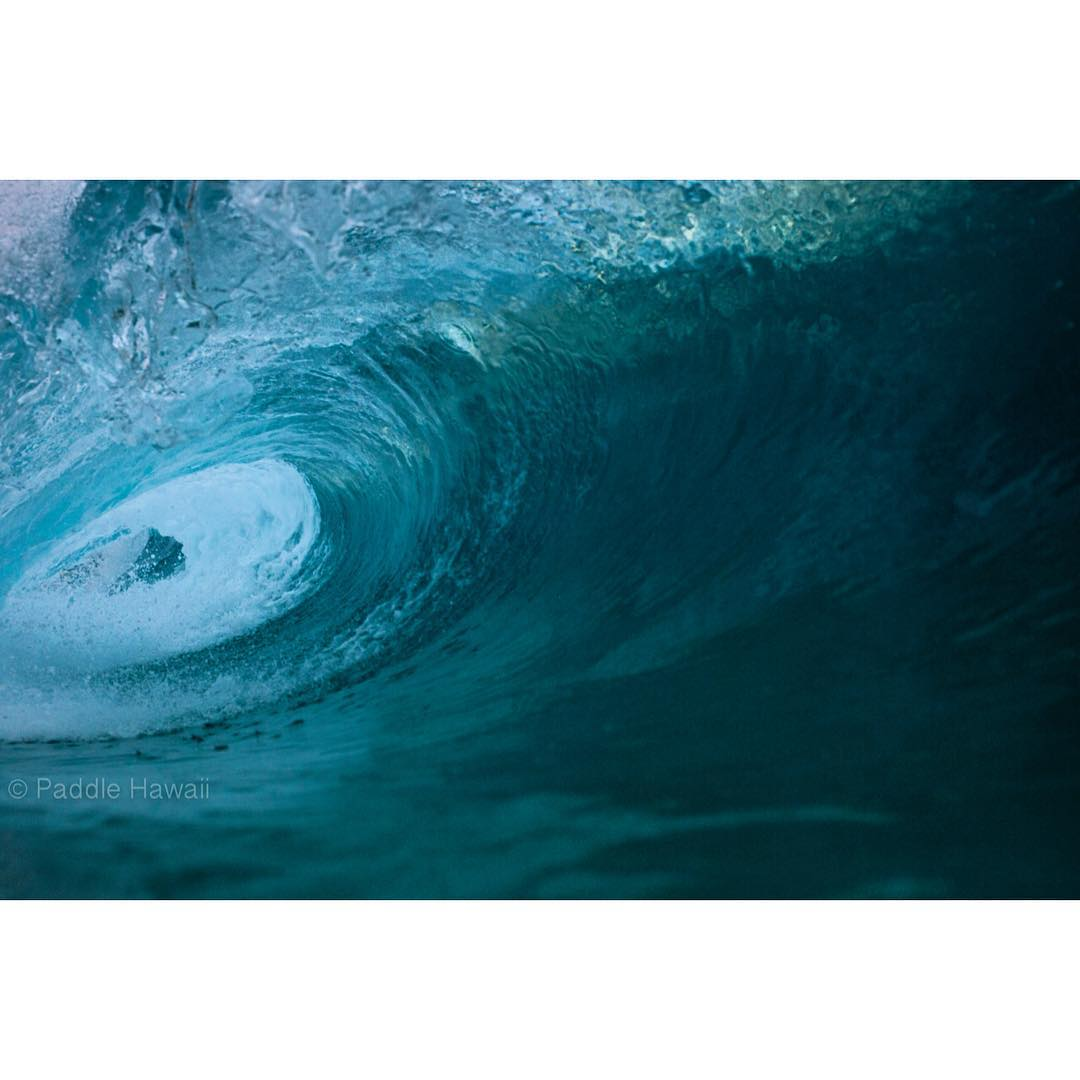 C A L M  I N  T H E  S T O R M  Shot last night with @canonusa in a custom #dkwaterhousing, visit @dalekobetich for amazing imagery and to order yours.  #imaginesurf #standupjournal #rareform #kaenon #navitasnaturals #nocqua #odinasurf #konaboys...