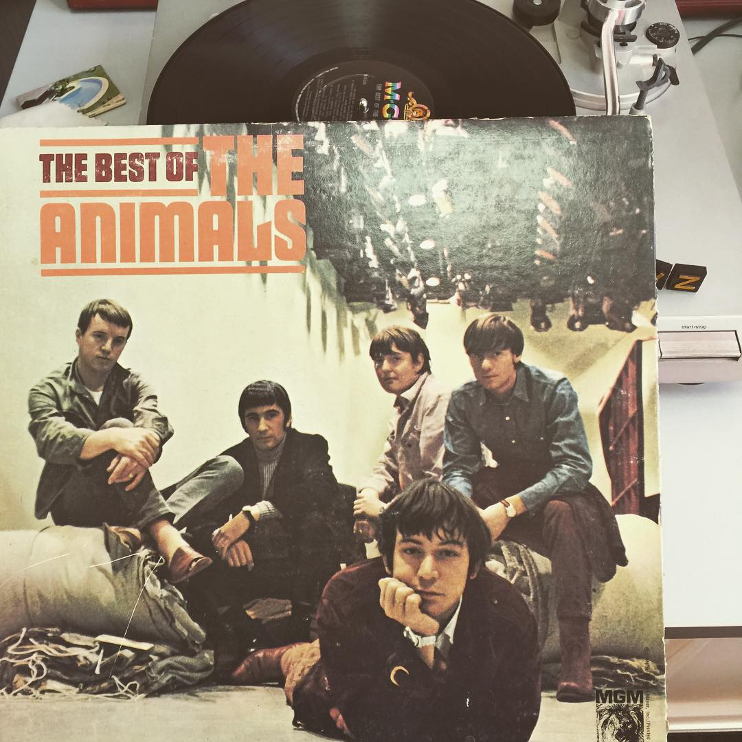 "Today's jams for #TurntableTuesday is #TheAnimals! Slaaaaaaave your life away!"" Swing your hair you crazy kids! #WeGottaGetOuttaThisPlace #VonZipper #SupportWildLife"