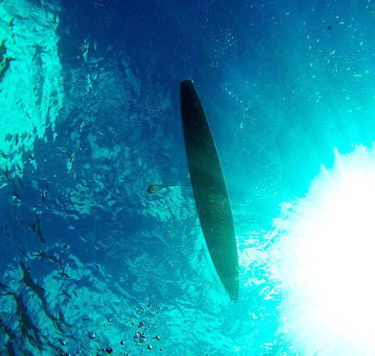 The ocean of full of endless possibilities, what's your next adventure? #roguesup #sup #standuppaddle