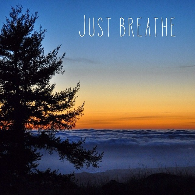 Just breathe. Happy saturday everyone. #cuipo #saverainforest