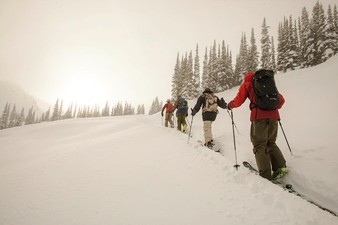 Four skiers and four totally different styles all skinning deep into the backcountry to find the goods. There's a 4FRNT backcountry ski for all and we've helped sort that out for you. What style are you? Bonus: 15% off touring gear. Link in profile....