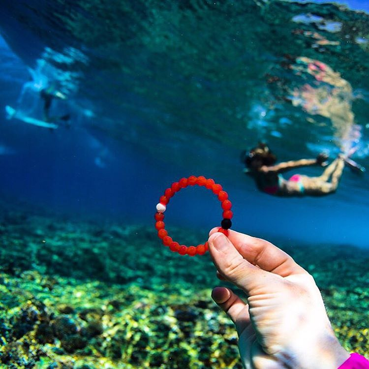 Dive into adventure #livelokai  Thanks @hisarahlee @alisonsadventures