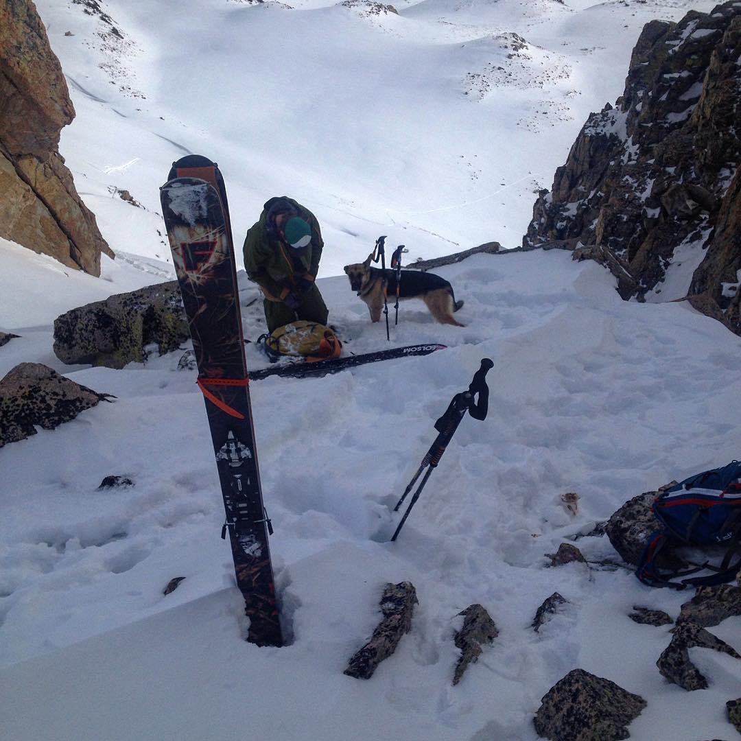 Top of the line vibes #skiuphill #skitour #germanshepherd #skidog