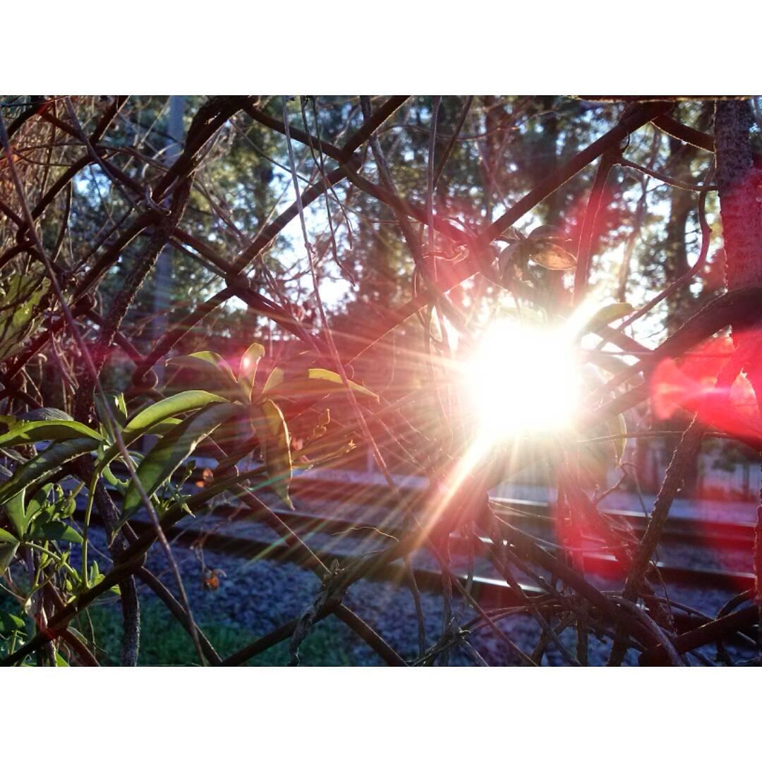 La magia del atardecer. #sunset #sunnyday #sunday #spring #Roca #Adrogue #nofilter #sinfiltro
