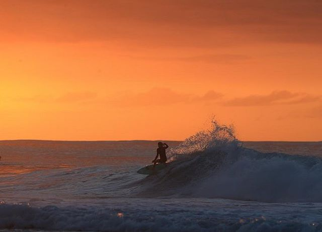 #regram of @rosyhodge shakin' it at Sunset on the North Shore #ROXYsurf