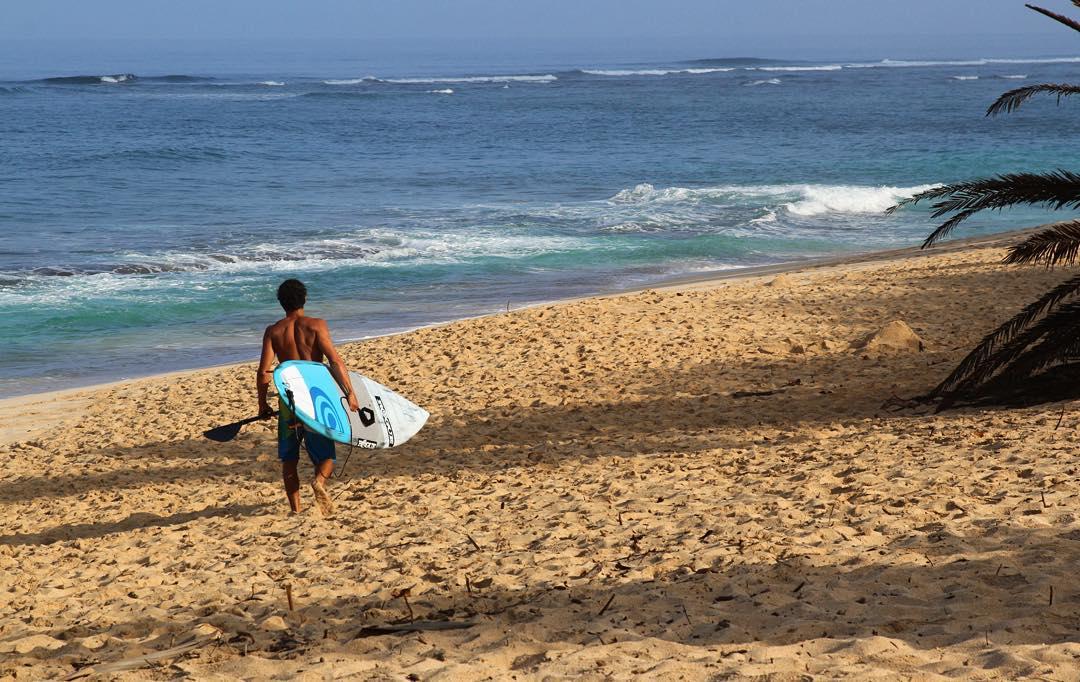 Photos of the Week: Hawaiian Bliss #roguesup #photooftheweek #sup #paddle #standuppaddle #hawaii