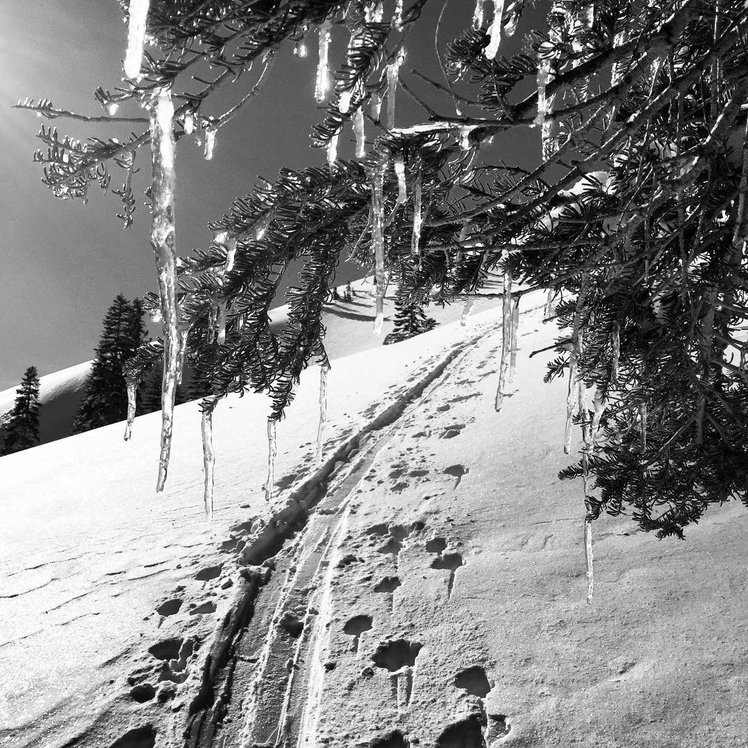 Ski uphill. Then down. Repeat. _ #thisistahoe #tahoemade #itswayoutthere
