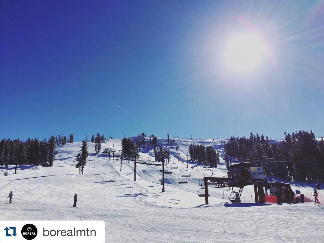 Join us kooks @borealmtn today for  FEEL GOOD FRIDAY! Shred all day long for just $25 w/ $5 of that going back to High Fives & @humanesocietytt (Psst! There is a photo booth & karaoke apres party) #borealmagic