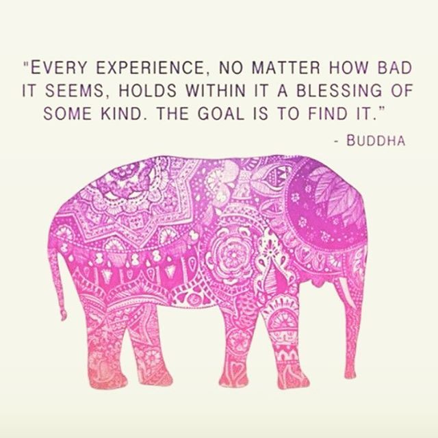 #buddha #blessings #grateful #love #localhoneydesigns #elephant #happiness