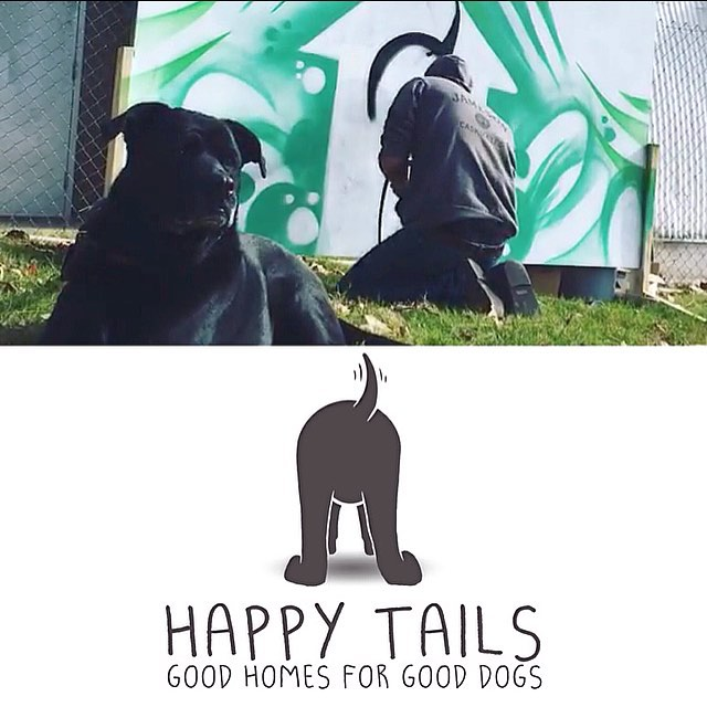 "SPRATX is excited to be a part of ""Happy Tails"". A new program created to help get APA approval for your restricted breeds that will allow you to have more options when looking to rent your new apartment! • • We designed the new ""face"""