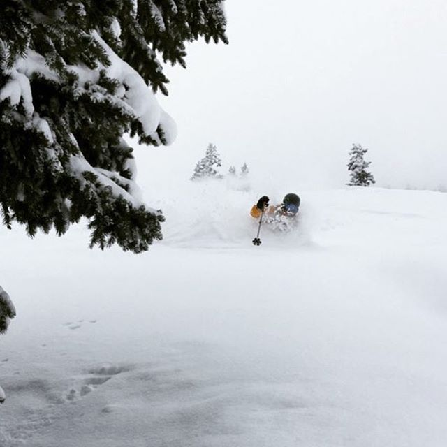 The front range of Colorado continues to ski pretty deep.  Skier: @dougtheskier PC: @lonesomepony  #embracethestorm | #flylowgear