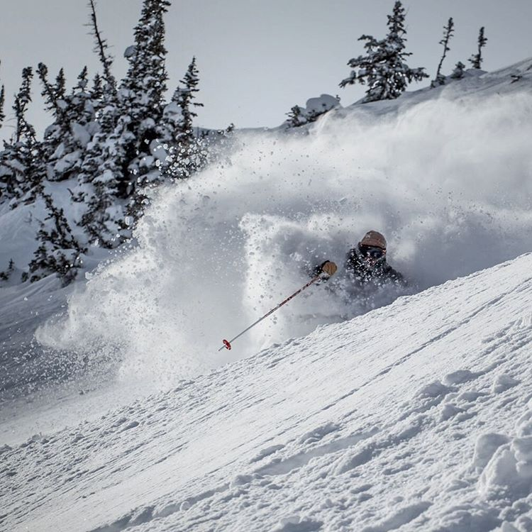 Soo much snow! @wileymiller | @altaskiarea PC: @angryjordan #shapingkskiing #skitheYLE