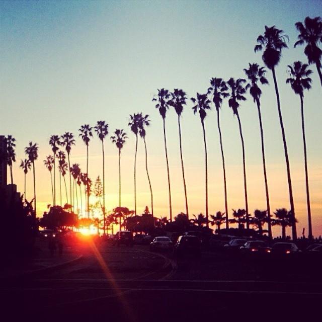 Good Night California #lovematuse