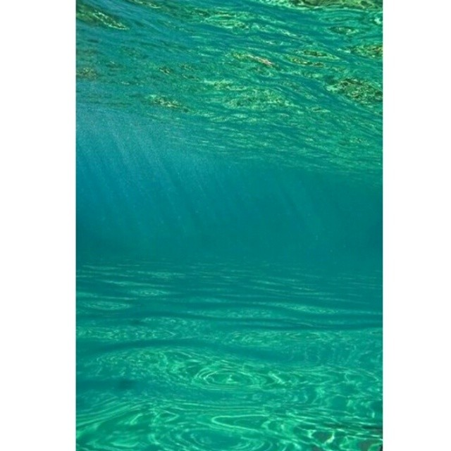 Bliss beneath the #waves  #surf #ocean #sunshine #ecology #conservation #wavetribe