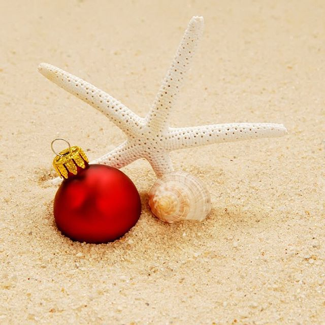 HOLIDAY VIBES // #besttimeoftheyear #luvsurf #holidays #beach