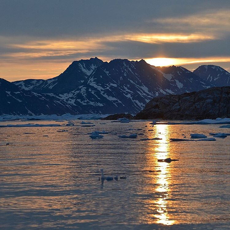 Winter solstice, 2015, a time to celebrate this amazing planet. And the fact that daylight hours are on the rise.