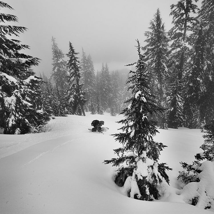 May your holidays be filled to the brim with peace, love and powder turns.  @stickfort through the lens of @briannevins