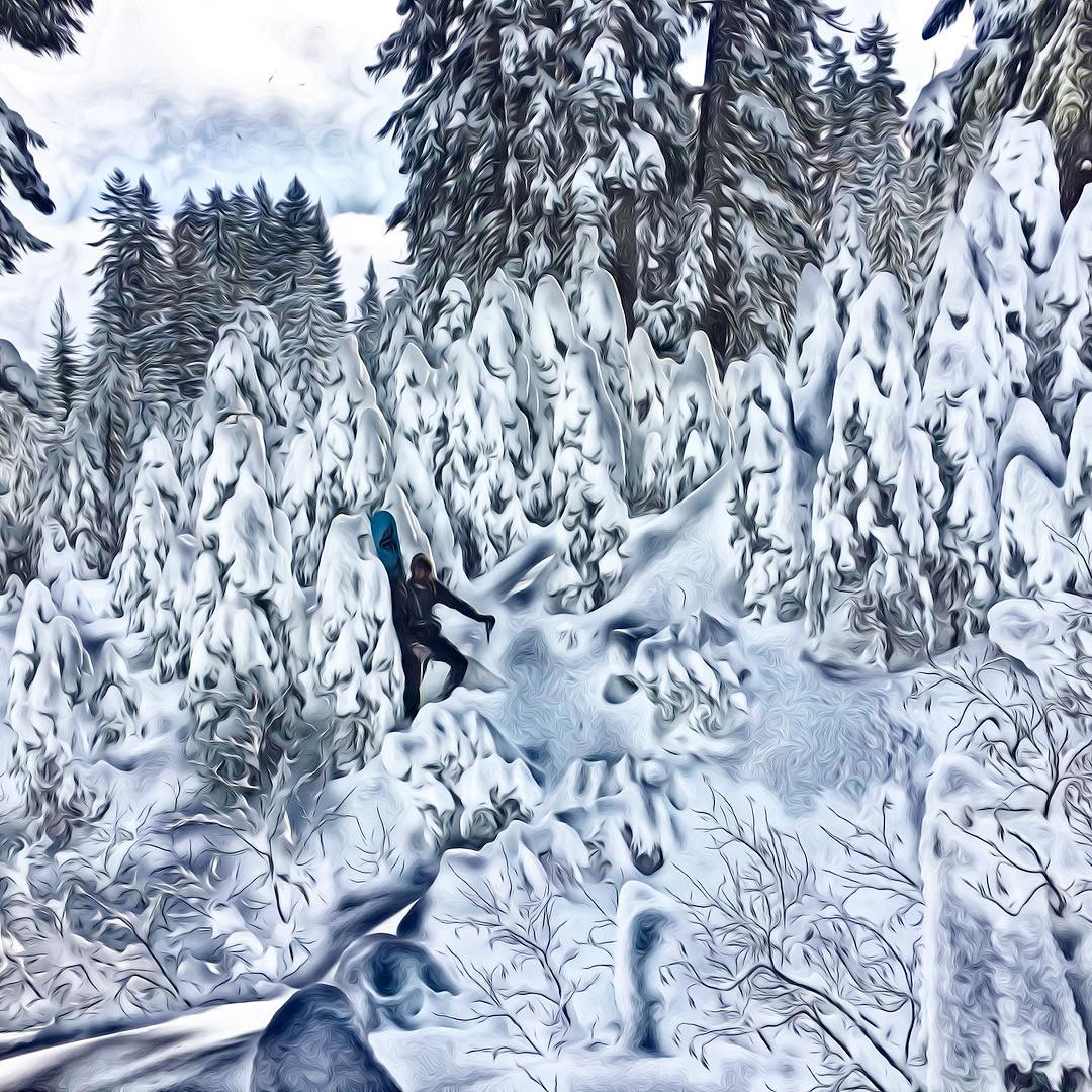 Happy Holidays from Thrive! #winterwonderland #ilovesnow #dreamingofawhitechristmas #thrivesnowboards #exploremore #laketahoe