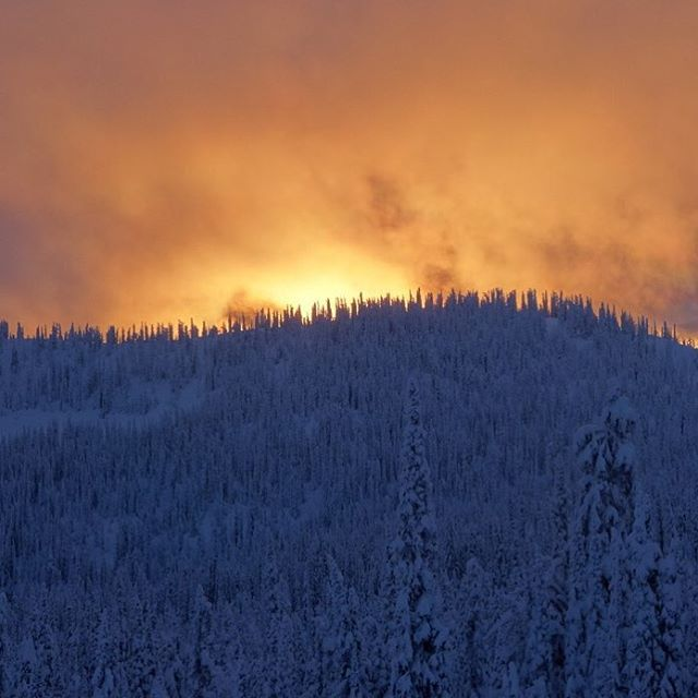 Tonight's fiery sunset here in the Canadian backcountry winter wonderland. Hope everyone had a good day, whether you celebrate today's holiday or not. #coexist #christmasfamilyshred #sunsetporn @BaldfaceLodge