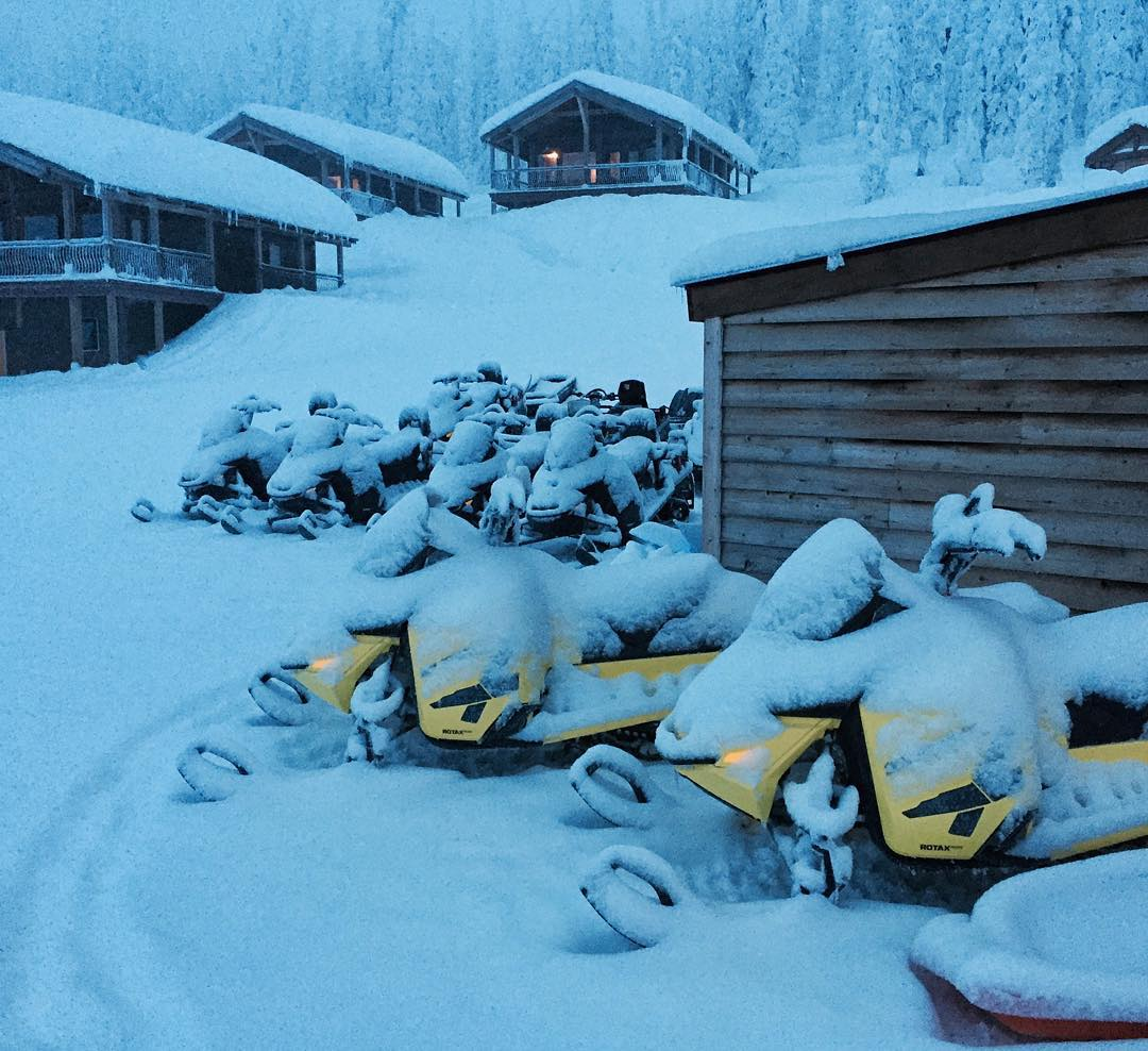 More of that white powdery stuff fell from the sky overnight, as seen here draped over this fleet of sleds. I like. #skypowder @Baldface @SkiDooOfficial #SkiDoo #summitx