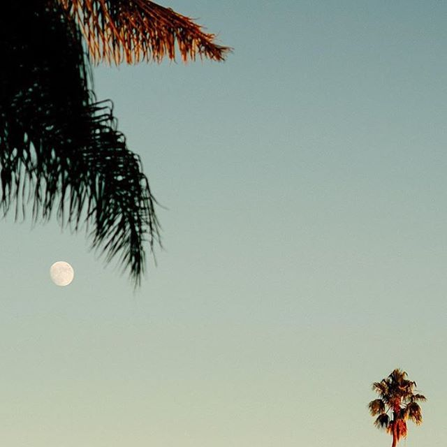 Moon Pacific |