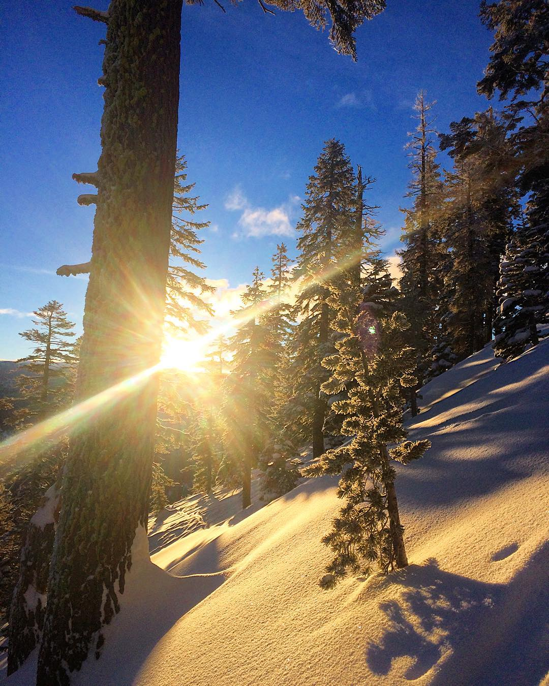 A little bit of powder for breakfast this morning. #risedesigns #risedesignstahoe #inspiredbynature #meyerspride #tahoebackcountry #goldenhour #dawnpatrol #sunrise #sunbeams #tahoelife