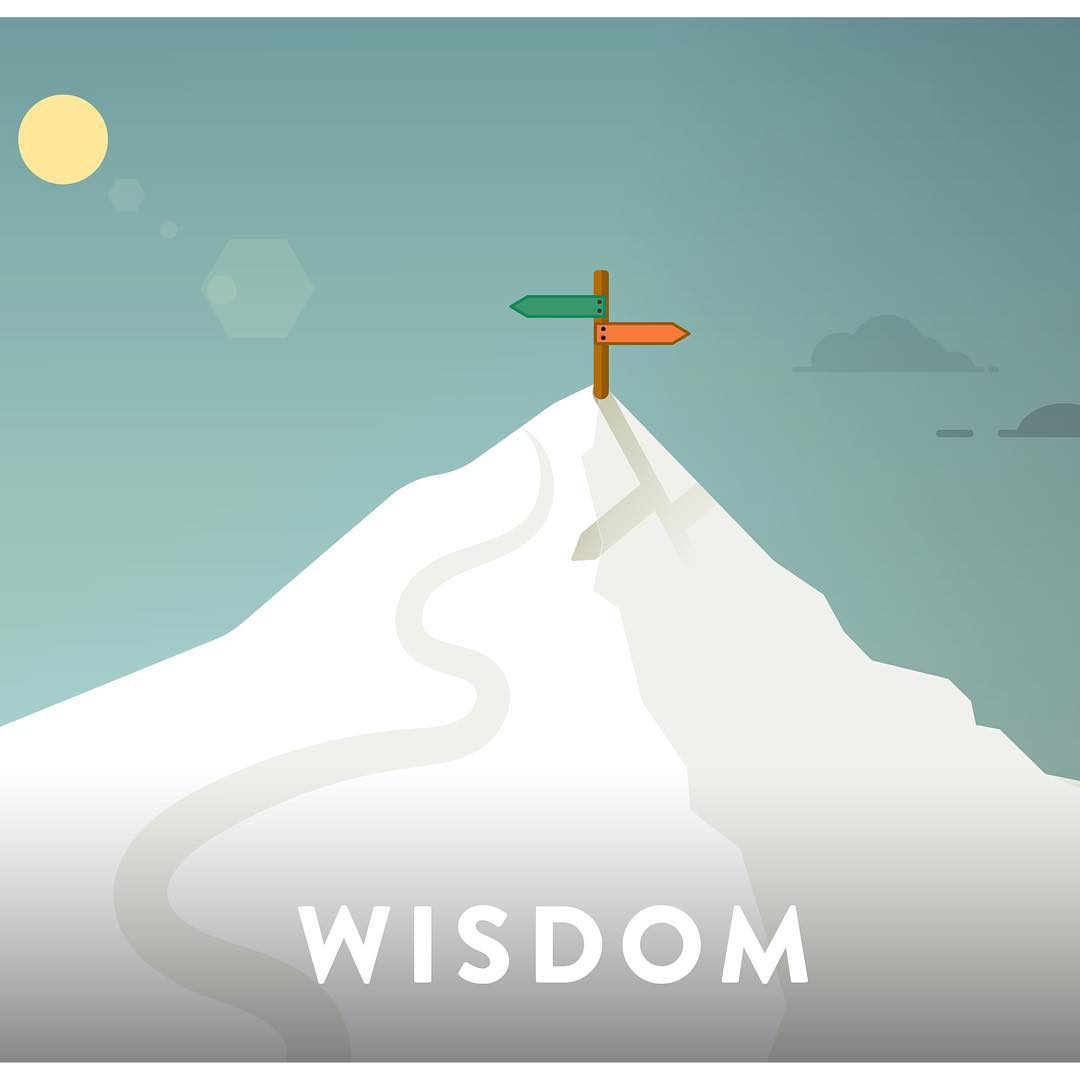 #wisdom - noun | wis·dom | 4 of the 6 SOS core values : knowledge that is gained by having many experiences in life : the natural ability to understand things that most other people cannot understand : knowledge of what is proper or reasonable : good...
