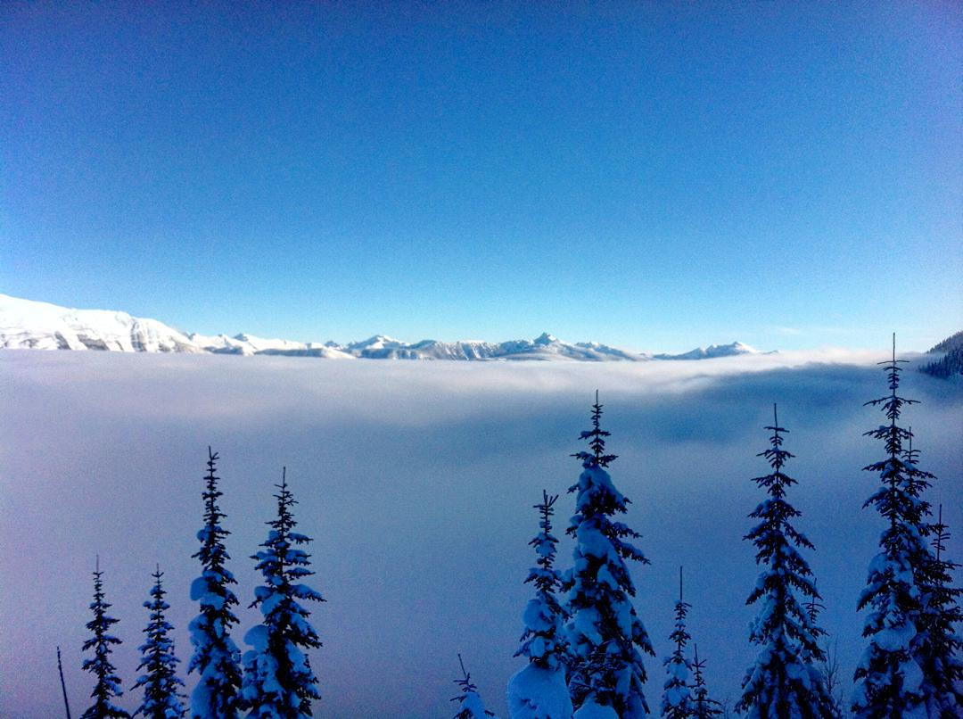 Even if you've just blown your sled, days like these are what we live for. #revelstoke #inversion #clouds #sunshine #chasingsnowflakes #graceskis #powder #backcountry #earnyourturns #skiing