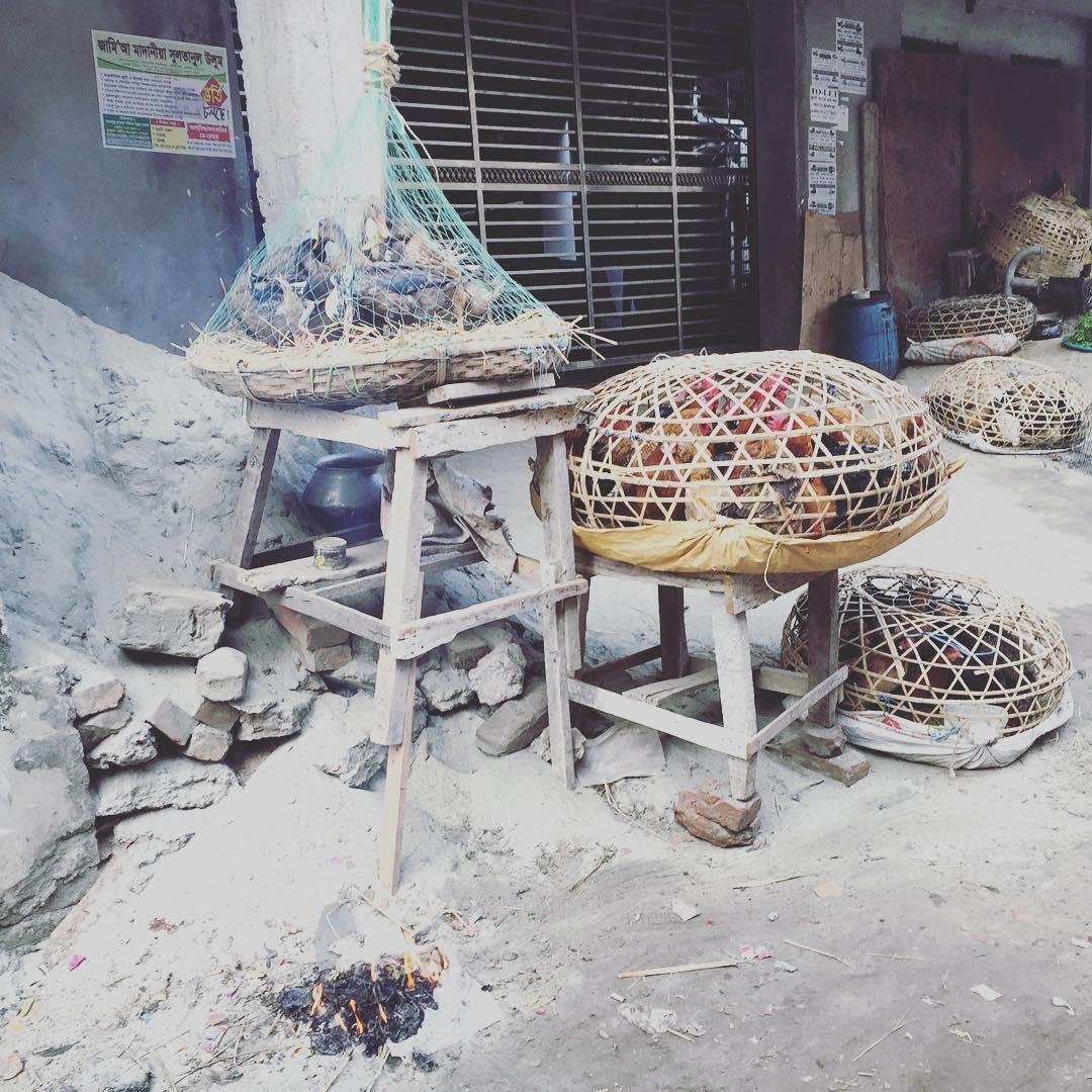 El calor de la frescura! #bangladesh #dacca #benga #trippingmood
