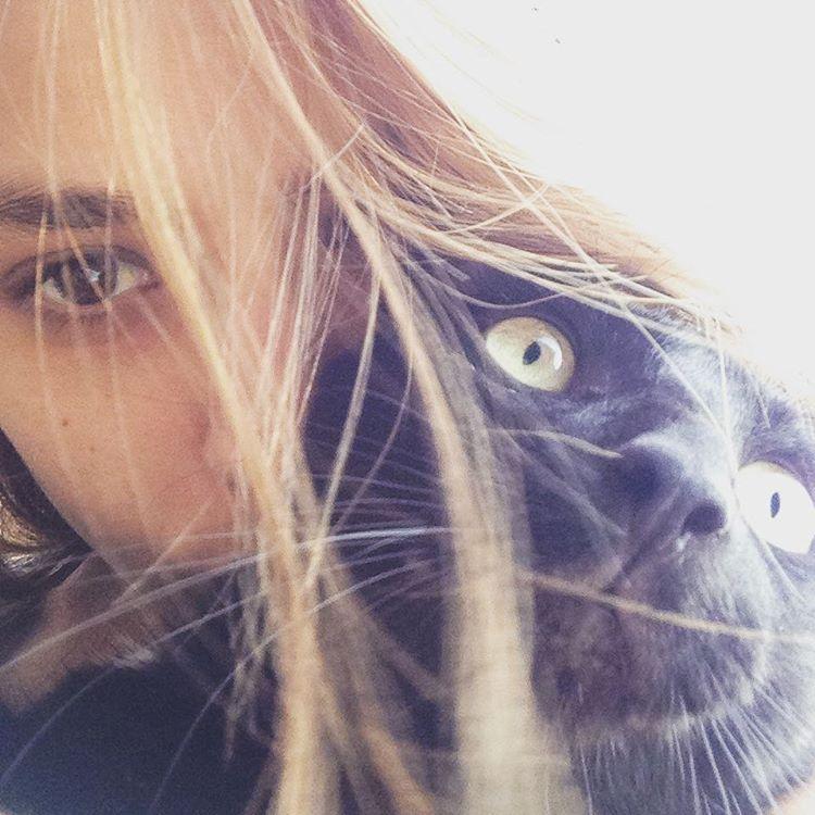 Apretarlo fuerte #tinto #cat #catblack #gato #amorgatuno