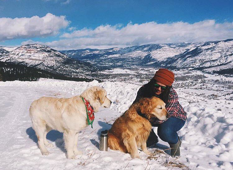 Snow + dogs = happiness #SunskiMath