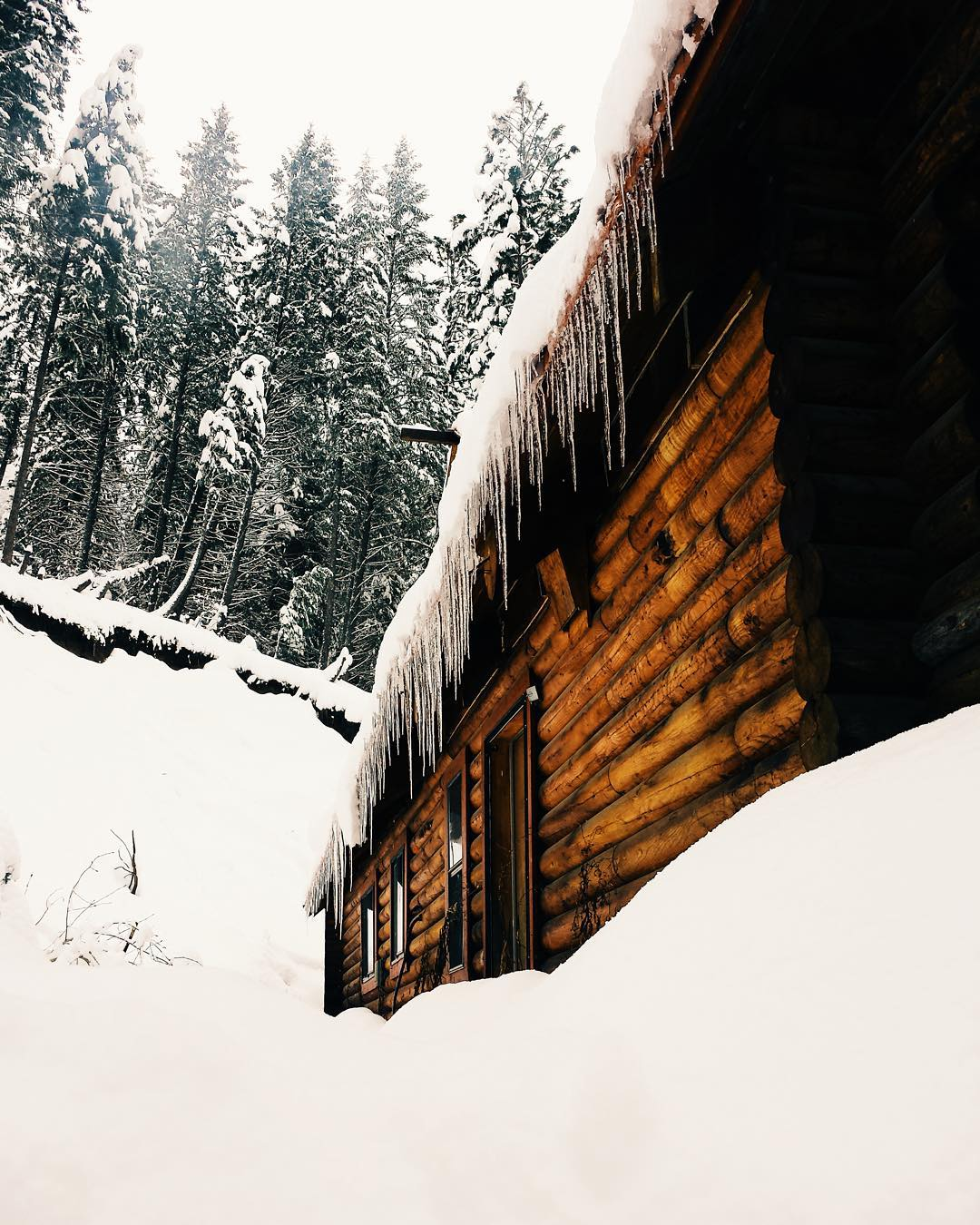 Icicles for dinner  Photo by @richardrichheart