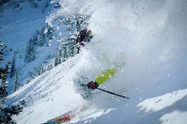 @skisendski blasting through some cold smoke at Bridger Bowl on some EHPs. Longest lasting pow sticks on the road. #shapingskiing | photo: @trees2ski