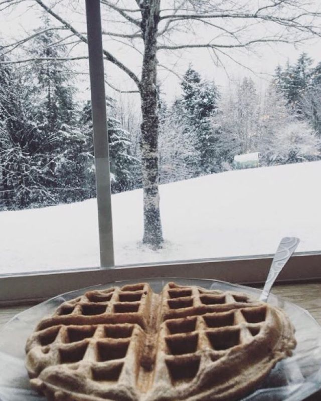 What's better, eating waffles or gazing into the snow globe? Let's do both. Photo by @veronicavaugnn #NatureOfProof