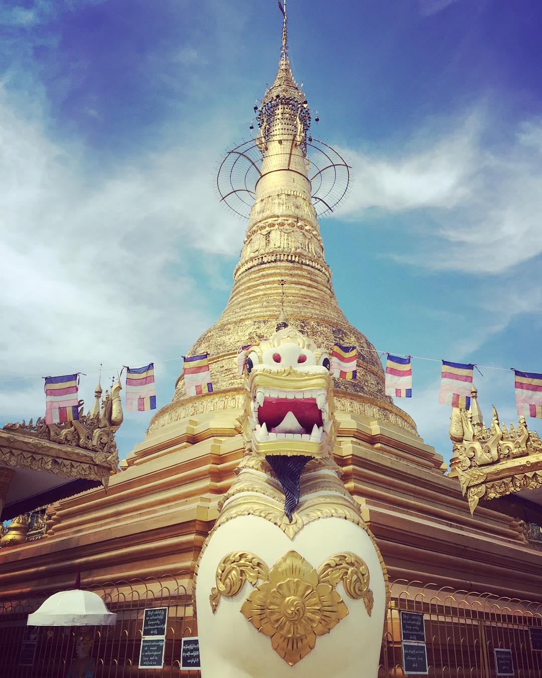 Dorado rugido! #yangon #myanmar #trippingmood #benga