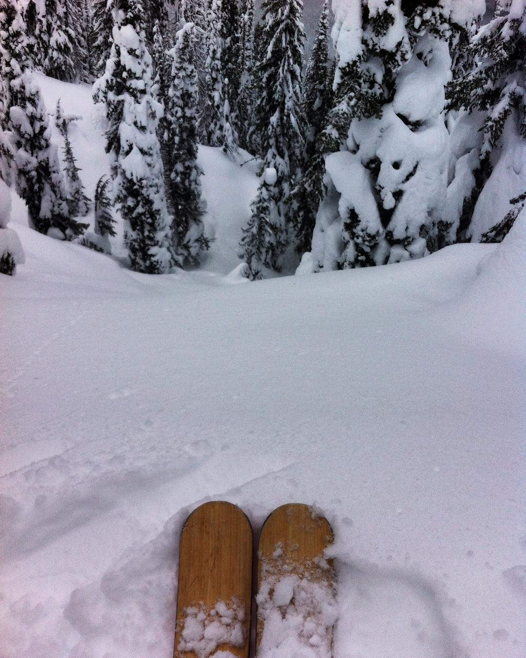 Droping. #revelstoke #powder #backcountry #earnyourturns #skitouring #skiing#chasingsnowflakes #graceskis