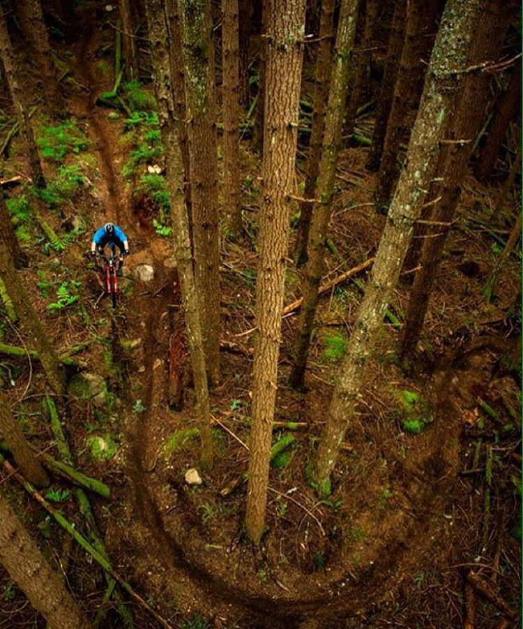 Being forced indoors due to winter downpours is tough, but the loamy goodness after is worth it. Here's a rad shot of @forrestriescodh to help keep the stoke alive. |