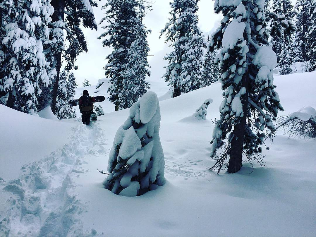 @ScottyVine gettin' powder!