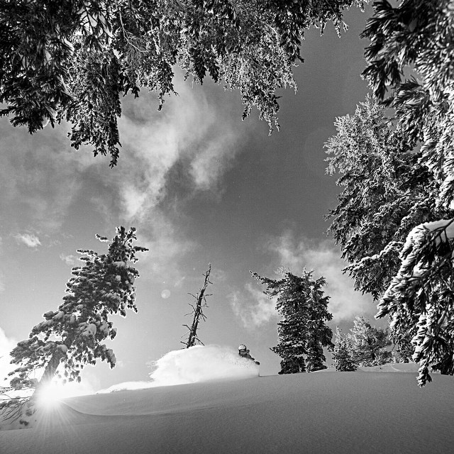 @blighguy took this shot early one morning this past week. The light was perfect and the snow just the same. These are the moments I have been waiting for! #play #forest #splitboarding #skilaketahoe @kirkwoodmtn #epicteam @neversummerindustries...