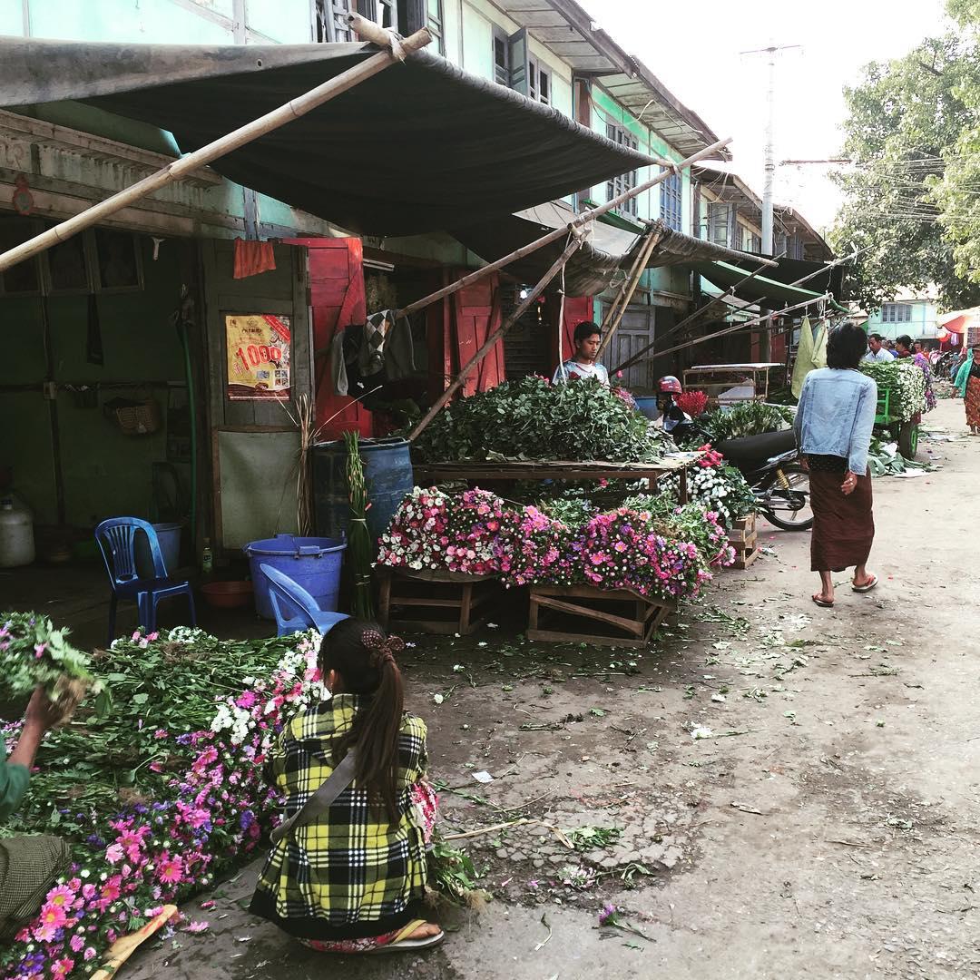Flower power! #flower #market #myanmar #trippingmood #benga