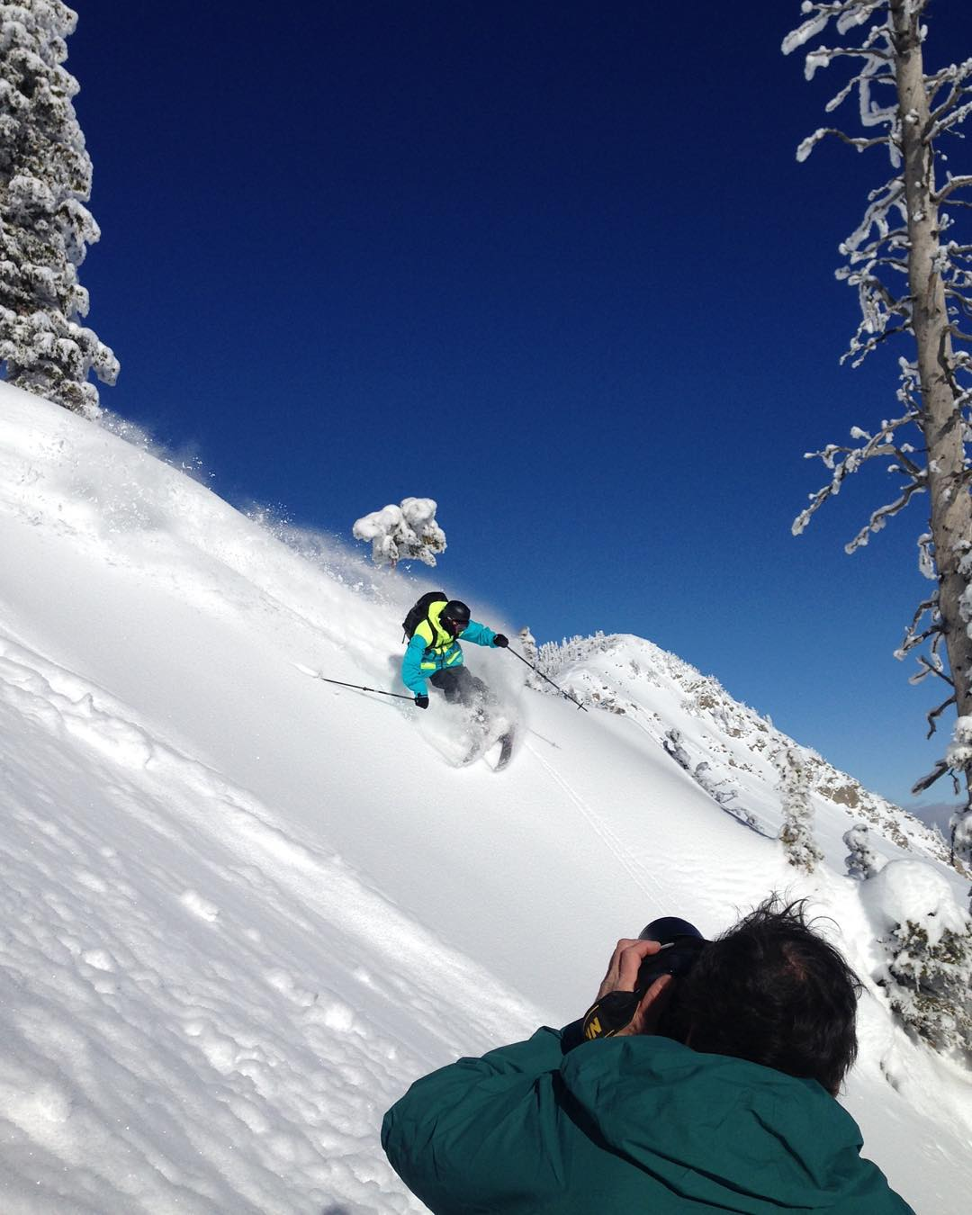Backyard conditions are prime ! @altaskiarea with @leecohen_pics #shapingskiing | photo: @austinramaley