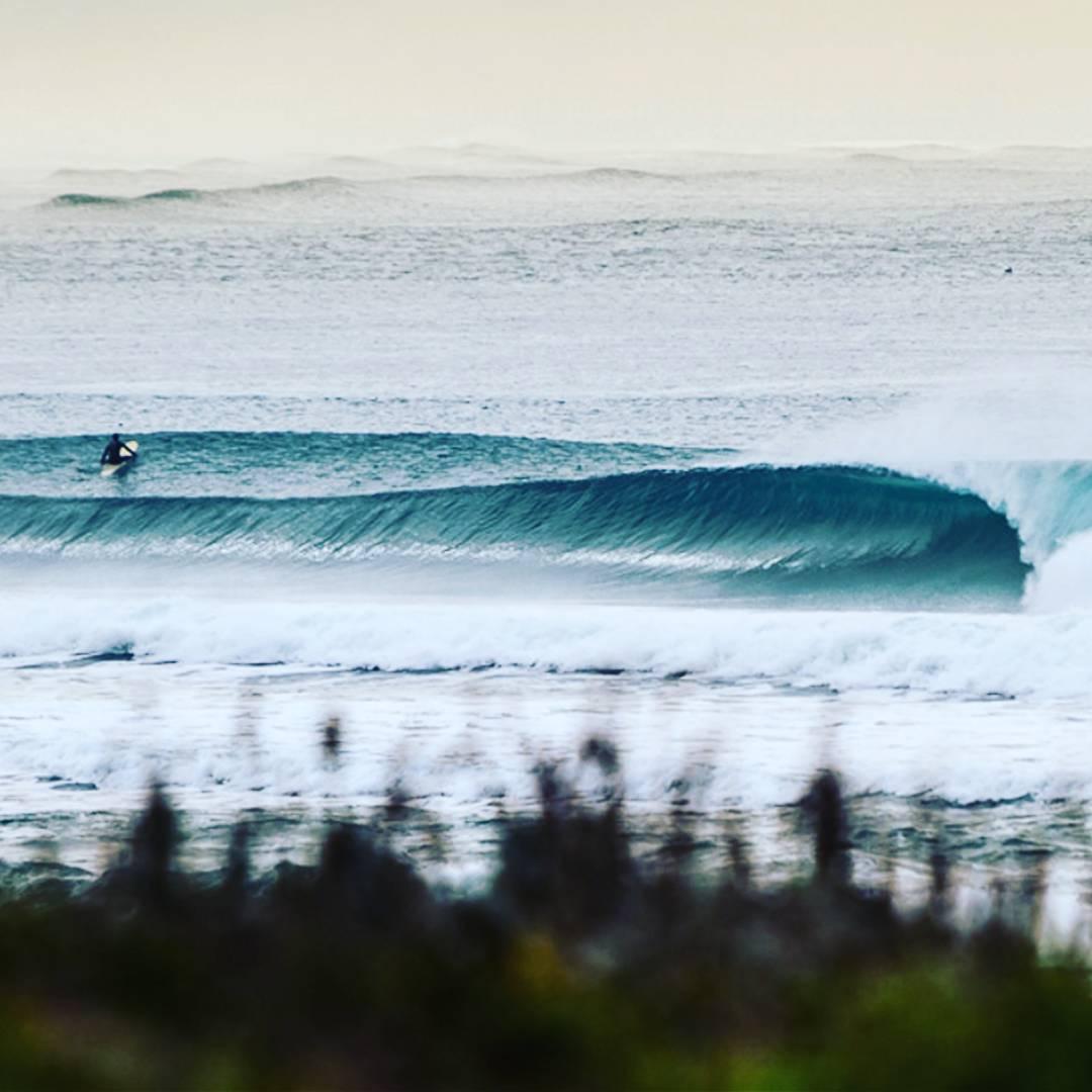 #California el #bestbet de #enero #maetuanis #surf #surfing California!