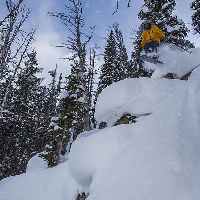 @elih101 finding pillows @jacksonhole  #embracethestorm | #flylowgear